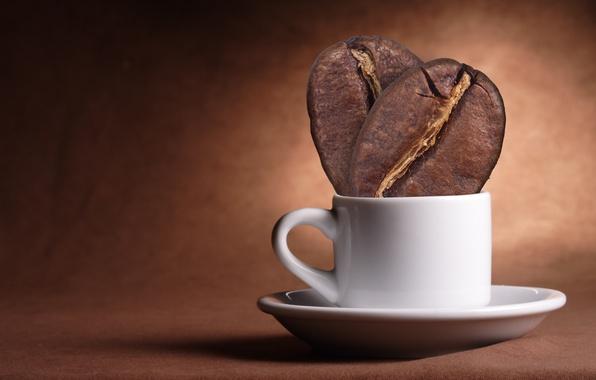 kafa zrna u šolji