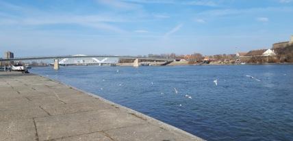 Foto: Most koji vodi na Petrovaradinsku tvrđavu