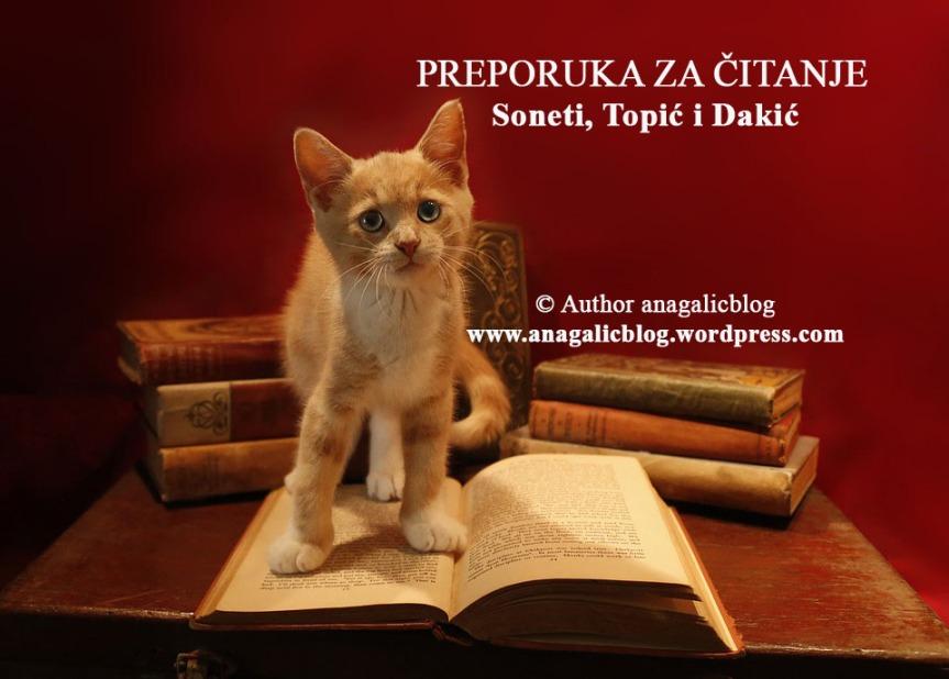 PREPORUKA ZA ČITANJE: Soneti, Topić iDakić